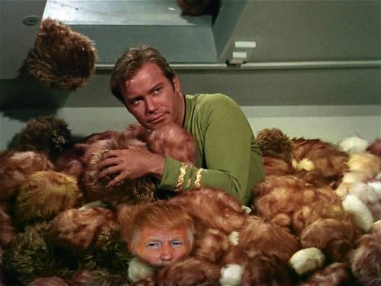 Kirk -Trump